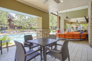 Three Bedroom Apartments for Rent in The Woodlands, TX - View from Outdoor Grilling Area