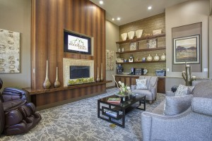 Three Bedroom Apartments for Rent in The Woodlands, TX -  Clubhouse Interior Couches with Fireplace