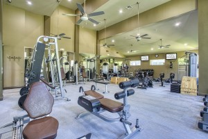 Three Bedroom Apartments for Rent in The Woodlands, TX - Fitness Center