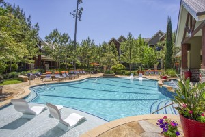 Two Bedroom Apartments for Rent in The Woodlands, TX - Pool (2)