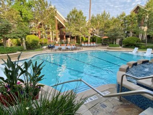Two Bedroom Apartments for Rent in The Woodlands, TX - Pool