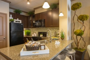 1 Bedroom Apartments for Rent in The Woodlands, TX - Model Kitchen