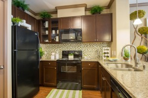 1 Bedroom Apartments for Rent in The Woodlands, TX - Model Kitchen (2)