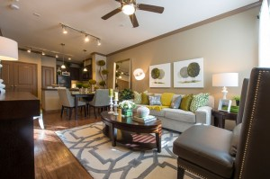 1 Bedroom Apartments for Rent in The Woodlands, TX - Model Living Room