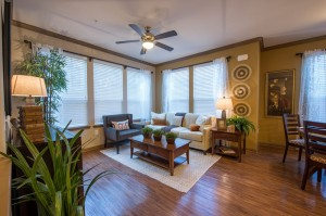 1 Bedroom Apartments for Rent in The Woodlands, Texas - Model Living Room
