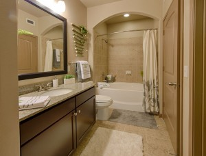 2 Bedroom Apartments for Rent in The Woodlands, TX - Model Bathroom