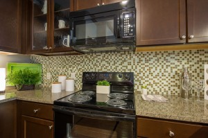 2 Bedroom Apartments for Rent in The Woodlands, TX - Model Kitchen Stove & Microwave