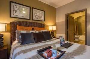 2 Bedroom Apartments for Rent in The Woodlands, Texas - Model Bedroom (2)