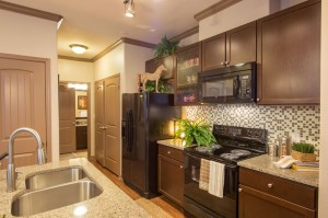 2 Bedroom Apartments for Rent in The Woodlands, Texas - Model Kitchen