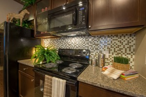 3 Bedroom Apartments for Rent in The Woodlands, Texas - Model Kitchen Stove & Microwave