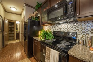 3 Bedroom Apartments for Rent in The Woodlands, Texas - Model  Kitchen